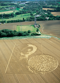 Alien Face Binary Message August 15, 2002 (Image credit: www.temporarytemples.co.uk)